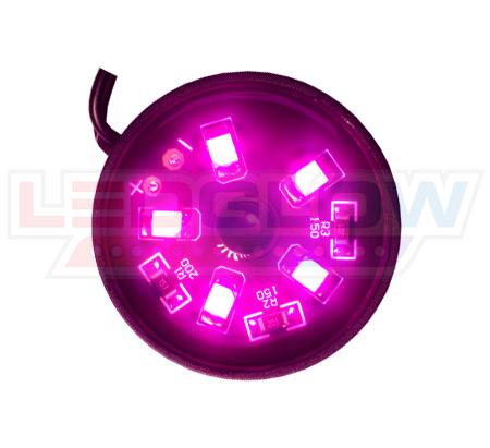 Pink Motorcycle Pod LED Lighting Kit