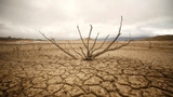 Climate change events linked to higher rates of suicide – study