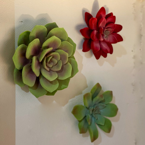 Succulent Wall Decor