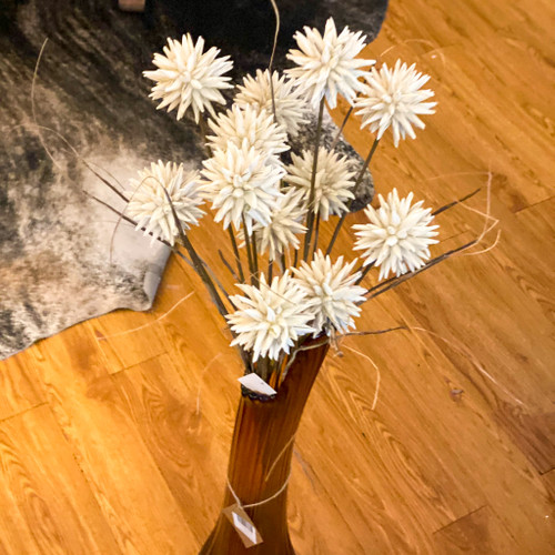 Dandelion Botanical