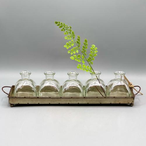Metal Tray w/5 Glass Vases