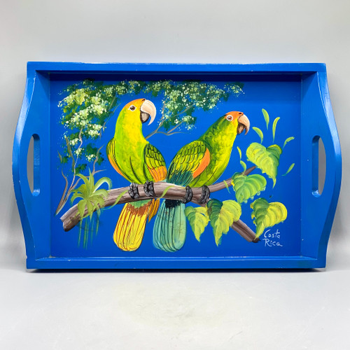 Painted Parrots Tray, Costa Rica