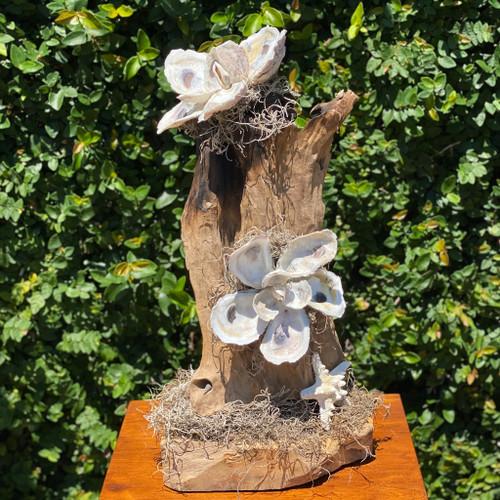 "21"" Driftwood w/Shell Magnolias & Starfish"