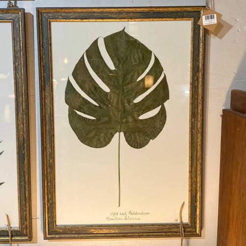 Framed Split Leaf Wall Decor