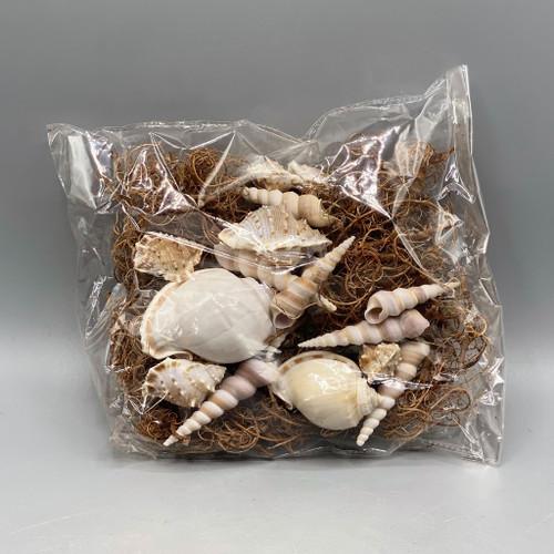 Bag of Assorted Shells w/Moss