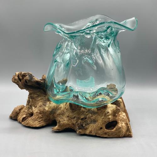Large Glass Lotus Vessel on Driftwood