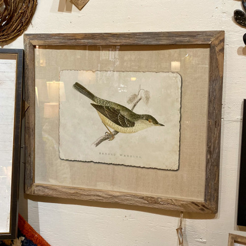 Framed Bird Wall Decor
