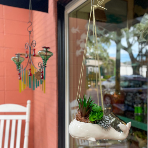 Hanging Whale Planter