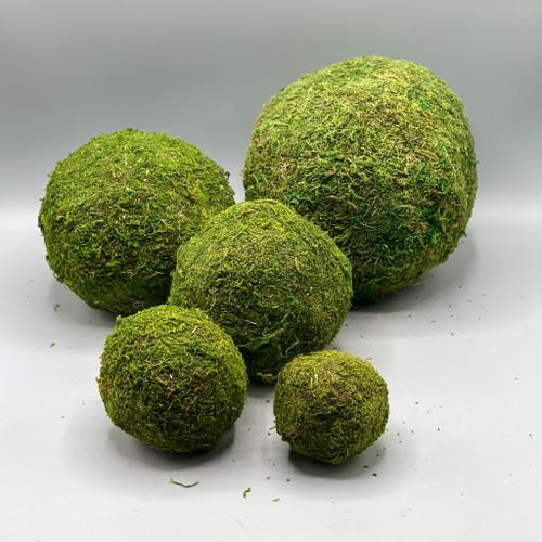 Decorative Moss Ball
