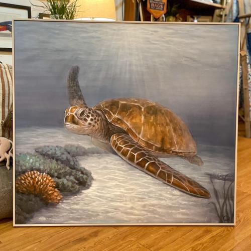 Cruising Turtle Framed Canvas