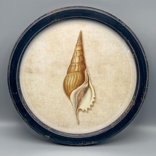 Round Wood Framed Shell Art