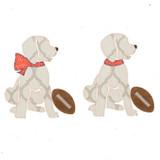 Football Pup Girl AND Boy Applique
