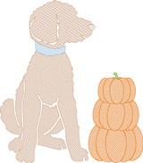 Doodle Boy with Pumpkin Stack Quick Stitch Embroidery