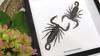 Scorpions framed Chernesonesometrus fulvipes Bits & Bugs