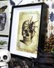 Skull print Real spider