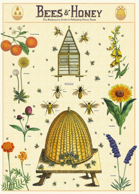 Gift wrap paper Bee print
