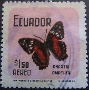 baama2-anartia-amathea-stamp-2.jpg