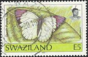 bacio-stamp-2.jpg