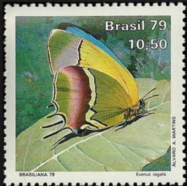 baermv-evenus-regalis-stamp.-2.jpg