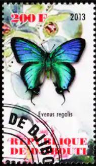 baermv-evenus-regalis-stamp.jpg