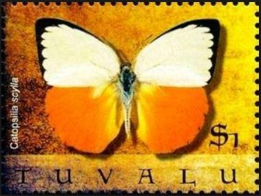 bbcsycvv-catopsilia-scylla-stamp-2.jpg