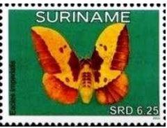 bbei-moth-stamp.jpg