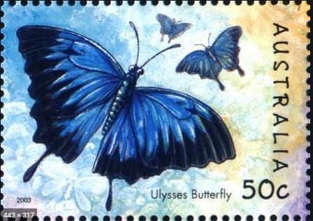bbul-stamp-2.jpg