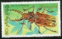 bnmc-macrodontia-cervicornis-stamp.jpg