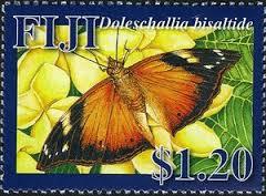 Image result for Doleschallia bisaltide stamp