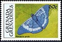 Image result for Panacea prola stamp