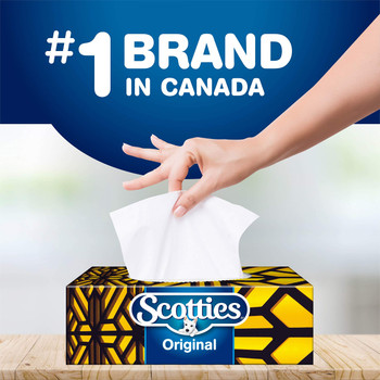 Scotties Facial Tissue, 2-ply, 126 sheets/box - 1 pack - {Imported from Canada}
