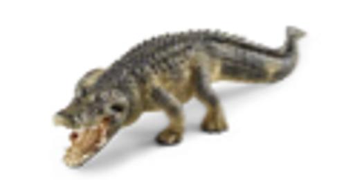 Wild Life Alligator