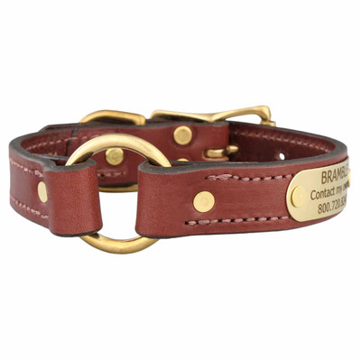 gold ring leather dog collar