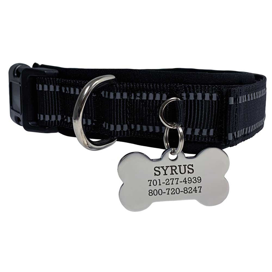 goodboy collar and tag