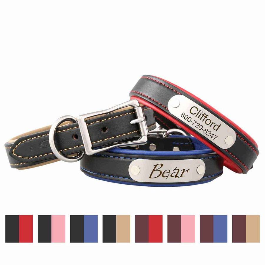 Padded Leather Collars with Nameplate