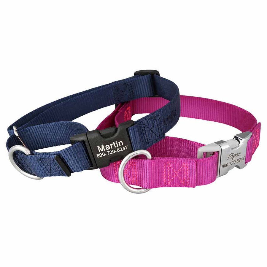 Martingale Dog Collar with Personalized Buckle Group