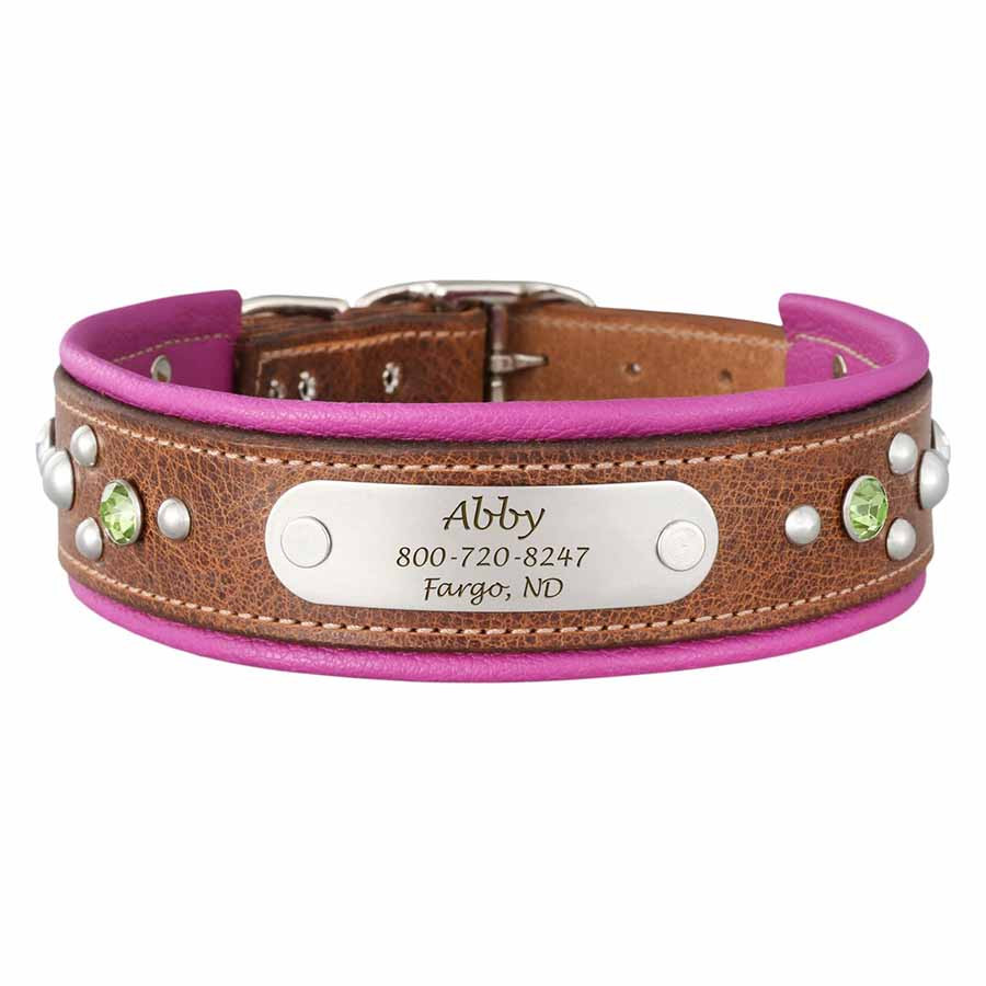 brown dog collar with named attached