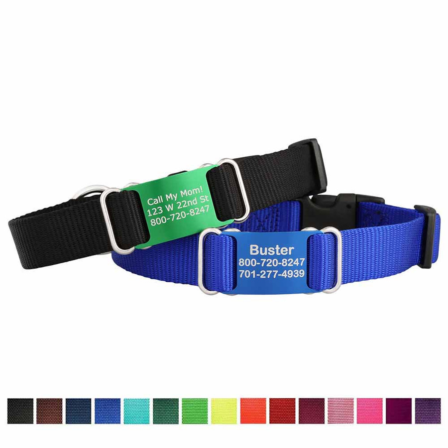black and blue dog collars with name tag attached