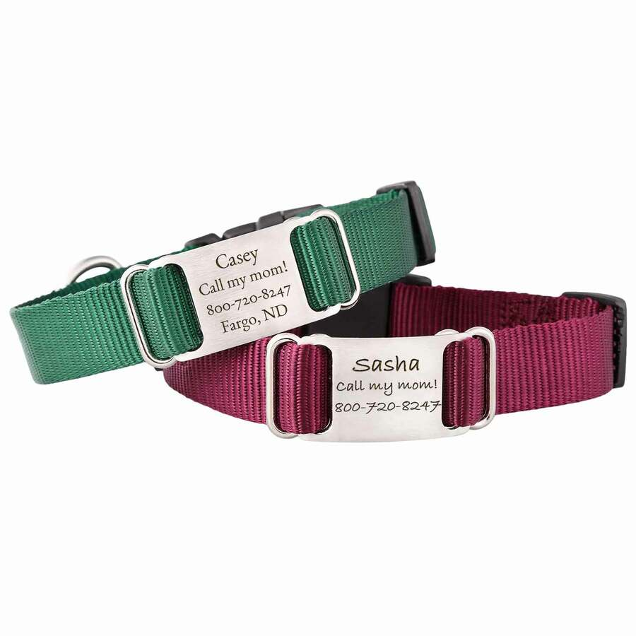 Nylon ScruffTag Personalized Dog Collar Group