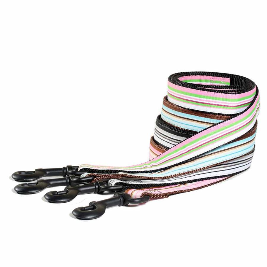 Personalized Striped Dog Leash