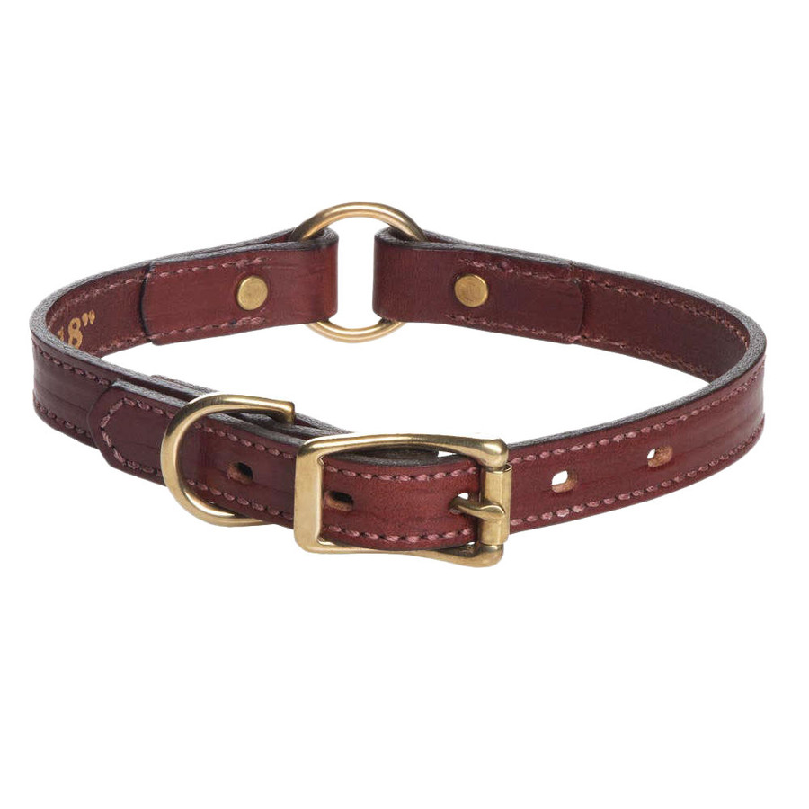 eighteen inch brown leather dog collar