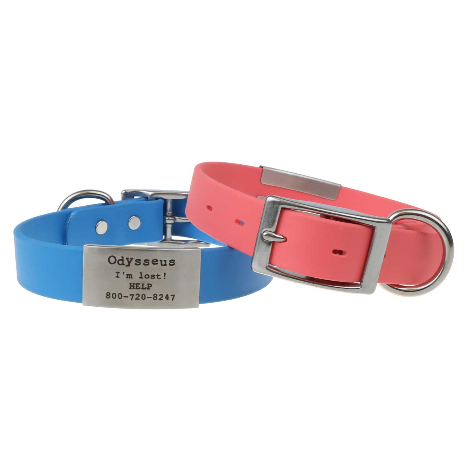 Spring Colors Waterproof SleeveTag Collars Plate and Buckle View