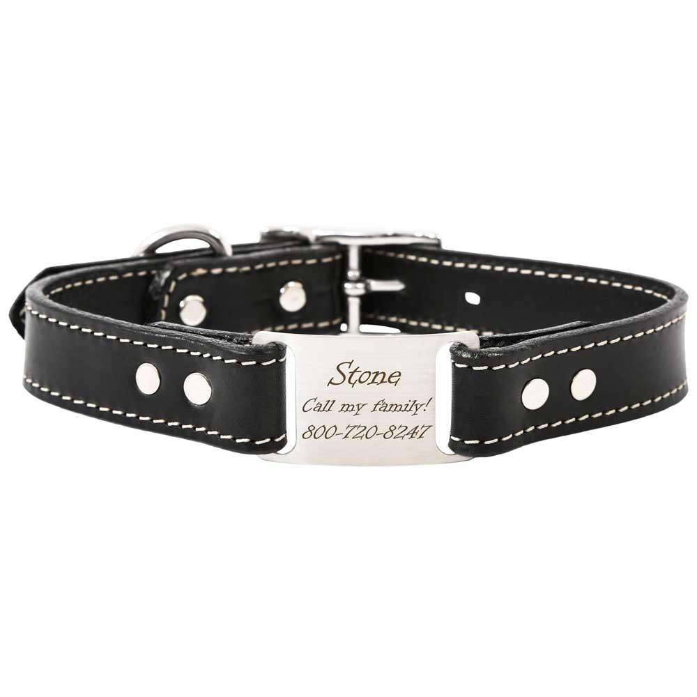Leather Scrufftag Collar Black