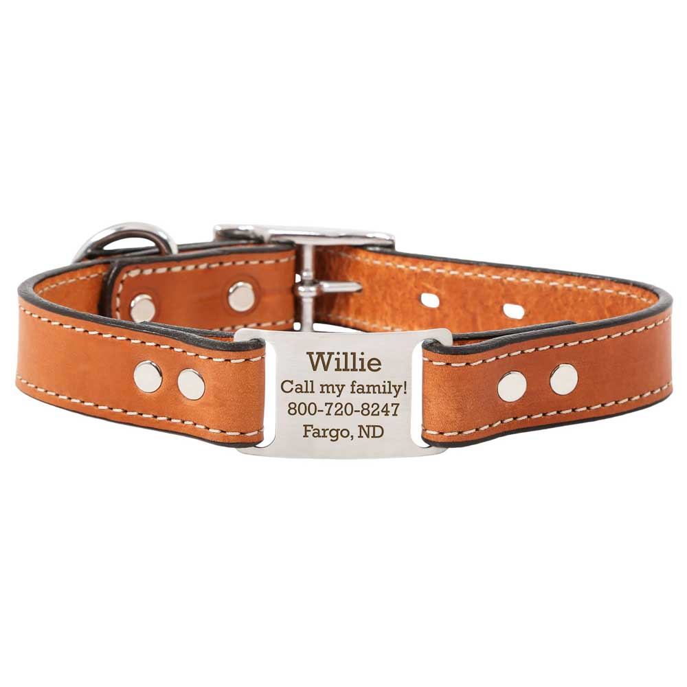 Leather Scrufftag Collar London Tan