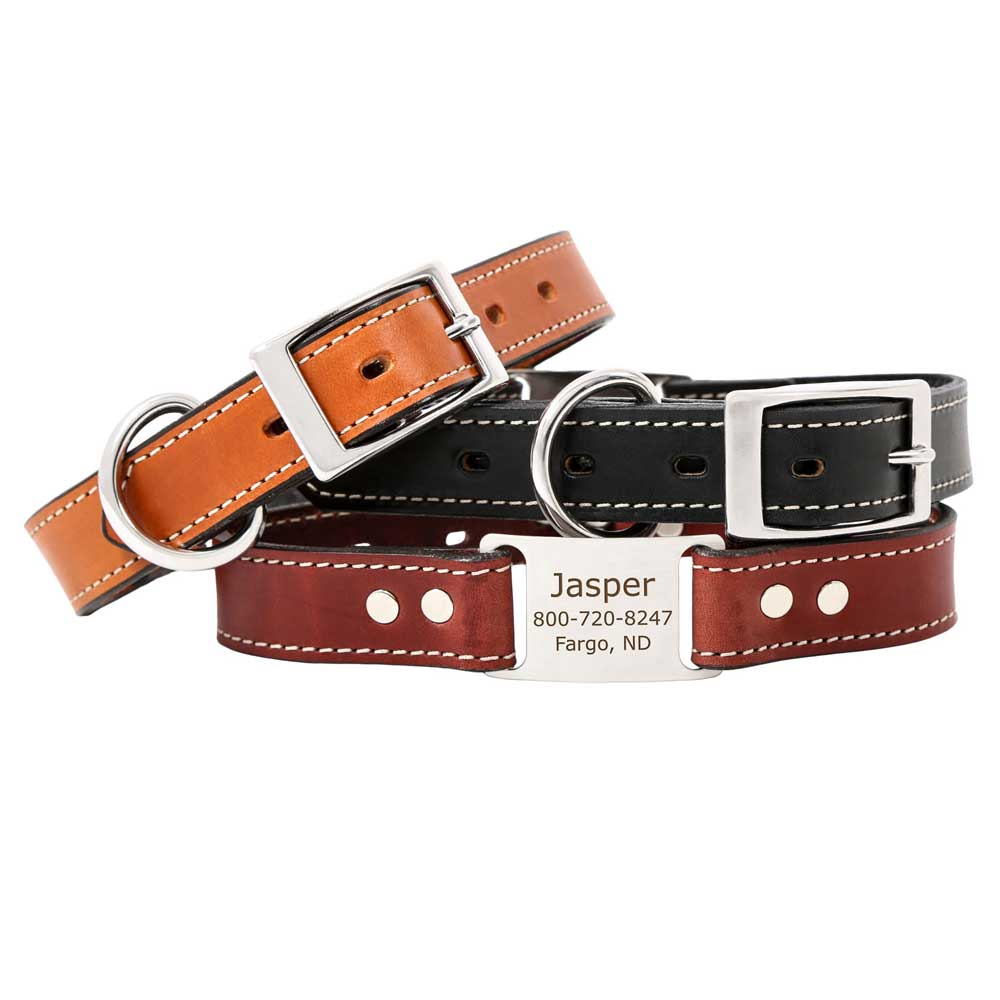 Leather Scrufftag Collar Group Photo