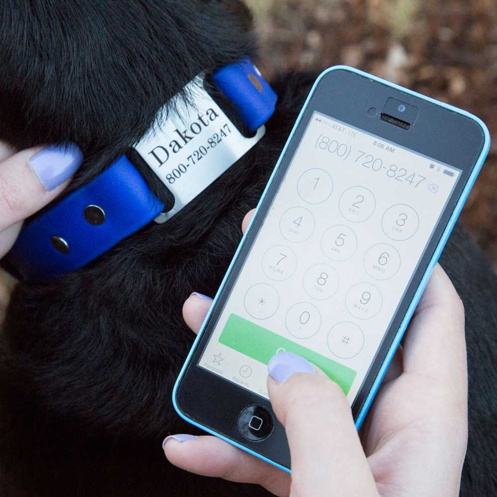 Waterproof Soft Grip ScruffTag Personalized Dog Collar with Phone
