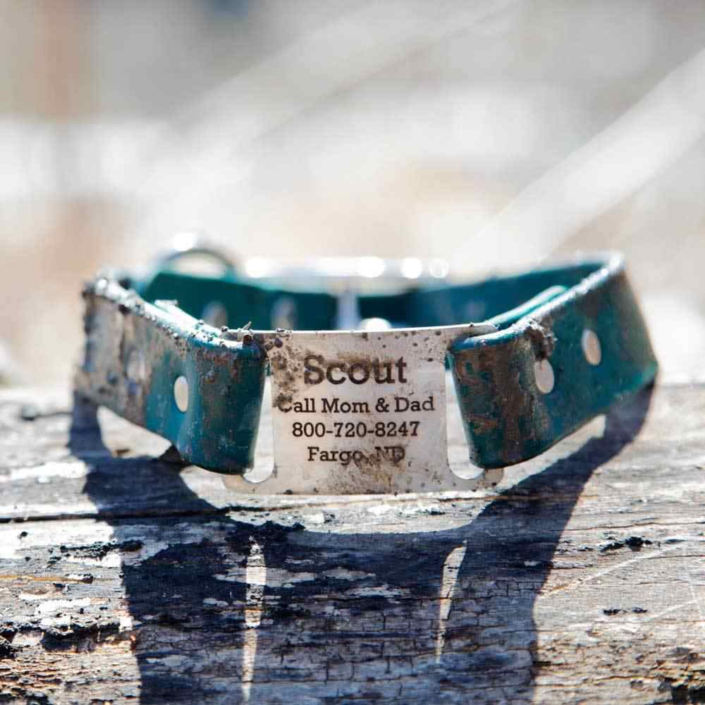Waterproof ScruffTag Collar Muddy