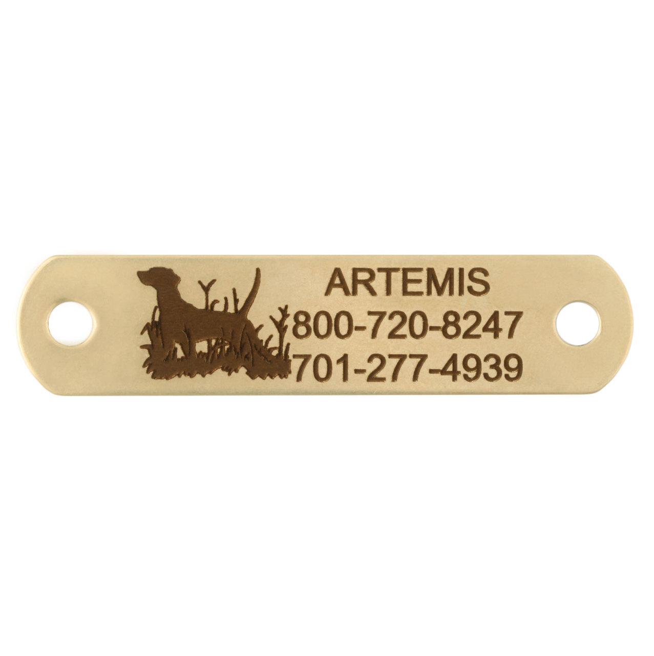 Sport Dog Rivet-On Dog Collar Name Plate Solid Brass Dog Pointing