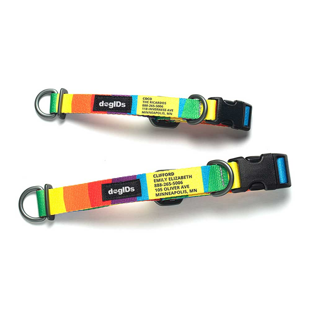 Printed Pattern Nylon Personalized Dog Collar Rainbow