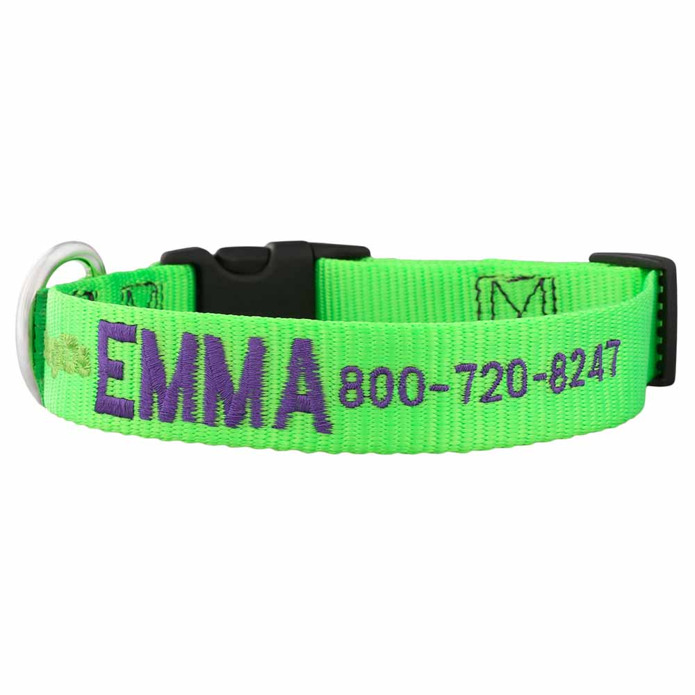 Embroidered Nylon Dog Collar Lime Green Purple